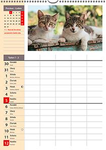 Nástěnný plánovací kalendář dvu-týdenní - jmenný - kalendárium